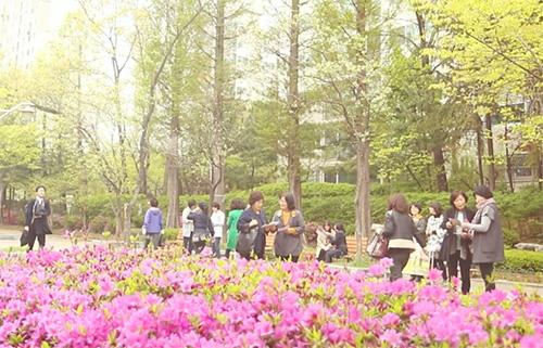 봄이 왔습니다